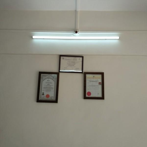 Rheumatologist in Singhgad Road